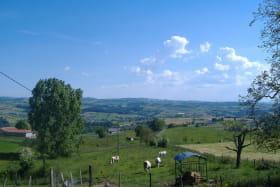 Gîte des Ormes à POMEYS (Rhône - Monts du Lyonnais): la campagne environnante.