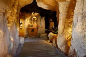 Musée de l'ours des cavernes