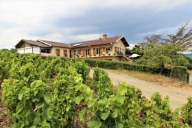 Gîte La Côte du Py à Villié-Morgon (Rhône - Beaujolais) : la maison au coeur du vignoble.