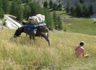Stevenson :  Du Puy en Velay à Chasseradès à pied