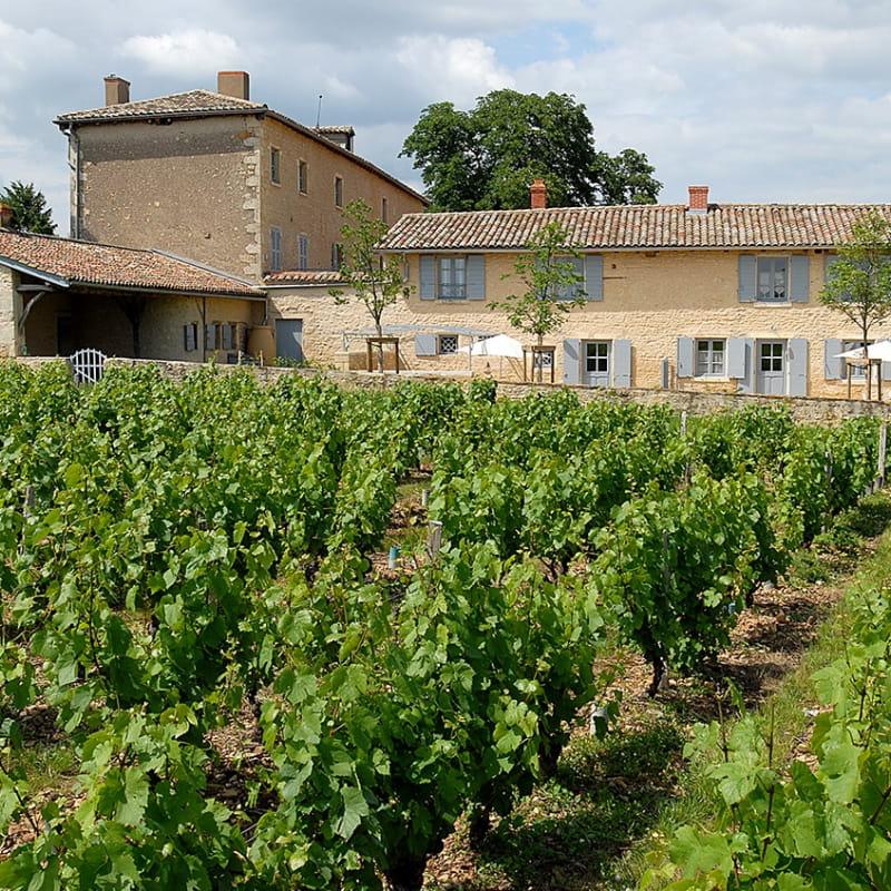 Le Logis de Marie à Pommiers dans le Beaujolais (Rhône) : la maison au coeur des vignes.
