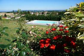 La piscine vue de la terrasse (2012)