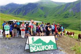 Route des Fromages de Savoie, Le Beaufort