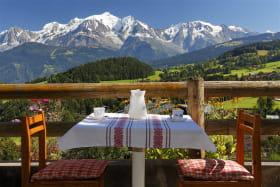 Vue sur le Mont Blanc du séjour