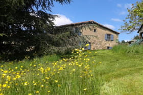Gîte/maison de vacances 'Les Mûriers de la Rafilière' à Saint-Martin-en-Haut (Rhône-Monts du Lyonnais - Ouest de Lyon) : fleurs des champs dans le jardin.
