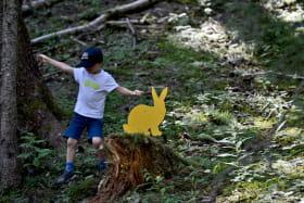 Parcours Cache-cache des Animaux