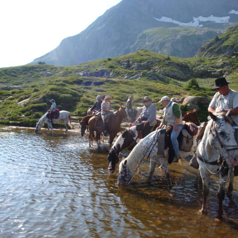 Découverte des alpages du sud-Isère à cheval