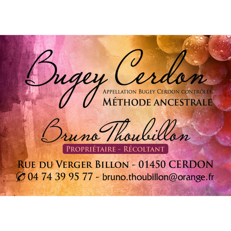 Caveau Bruno THOUBILLON