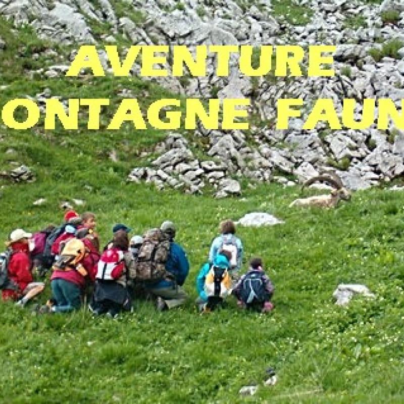 Aventure montagne Faune