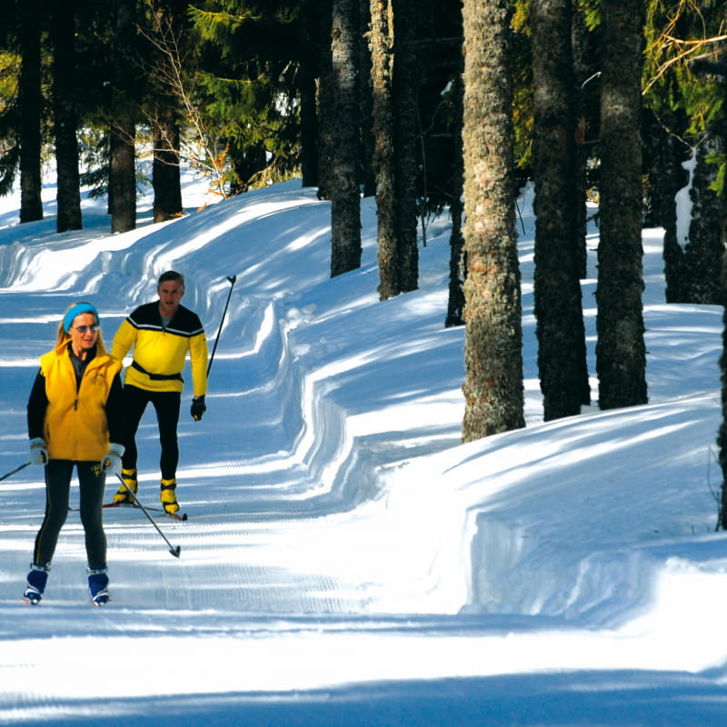 Ski de Fond sur le Plateau du Mezenc