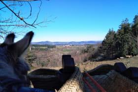 Panorama sur le Plateau de Vernoux
