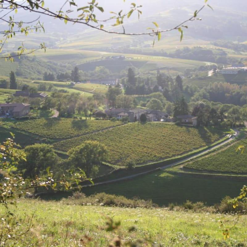Domaine de Côtes Remont