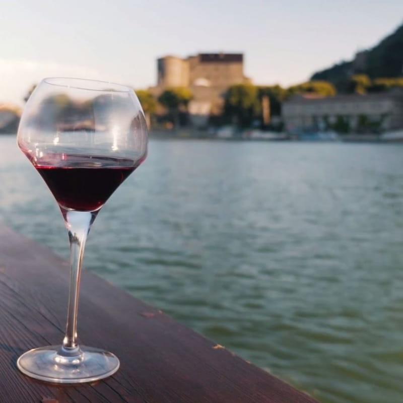Apéro sur l'eau « vins et fromages » au fil du Rhône - Terres de Syrah