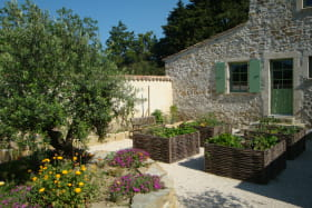 Le jardin aromathique
