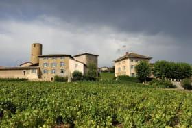 Gîte de groupe Le Vigneron 15 personnes - Château des Tours à St Etienne-La-Varenne (Rhône - Beaujolais)