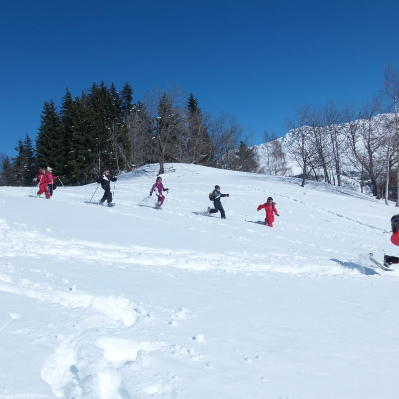 Randonnée raquettes hiver