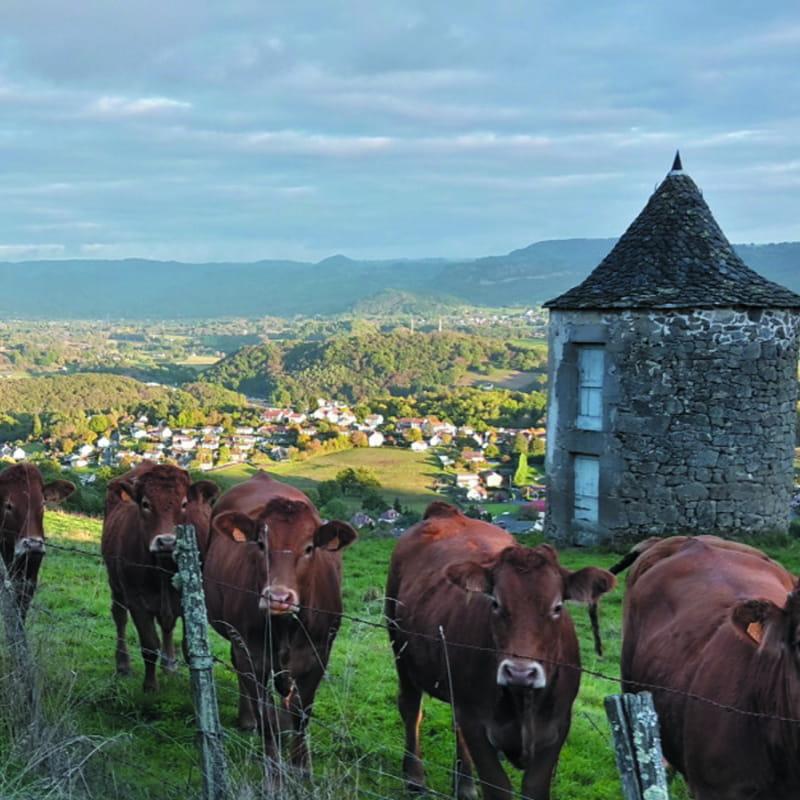 Les Gorges de la Dordogne et le Champagnaguès