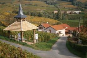 Les 3 gîtes du vignoble Aufranc à Fleurie (Rhône - Beaujolais des crus - vignoble) : l'accès.