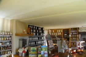Le comptoir de Zanzibar