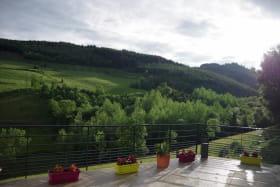 Gîte du Grand Peisselay à VALSONNE (Rhône - Beaujolais Vert) : terrasse et vue.