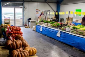 Thierry Janin - Légumes et fruits - Producteur-Revendeur