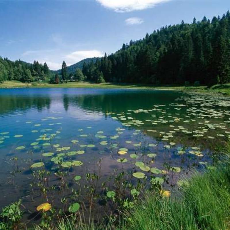 Randonnée - Le lac Genin