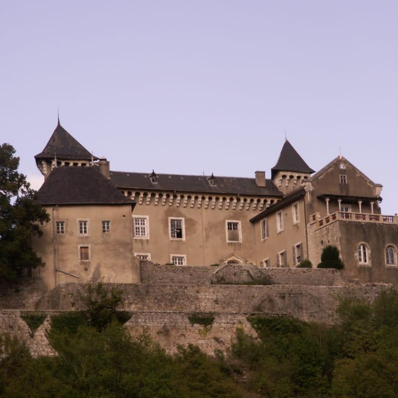 Château de Grammont - Ceyzérieu