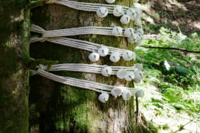 Horizons - Arts Nature en Sancy