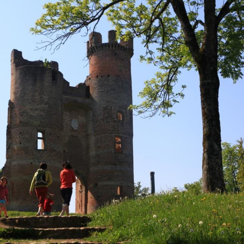 Le château de Bressieux
