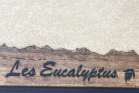 Les Eucalyptus  n°2