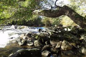 Le Moulin des Valignards