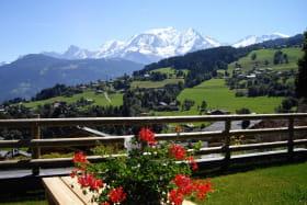 Vue du Mont-Blanc depuis l'espace vert du chalet.