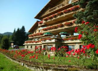 Hôtel les Roches Spa