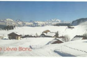 Le Lièvre Blanc - 42 m² - n°424