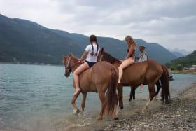 Les chevaux les pieds dans l'eau !