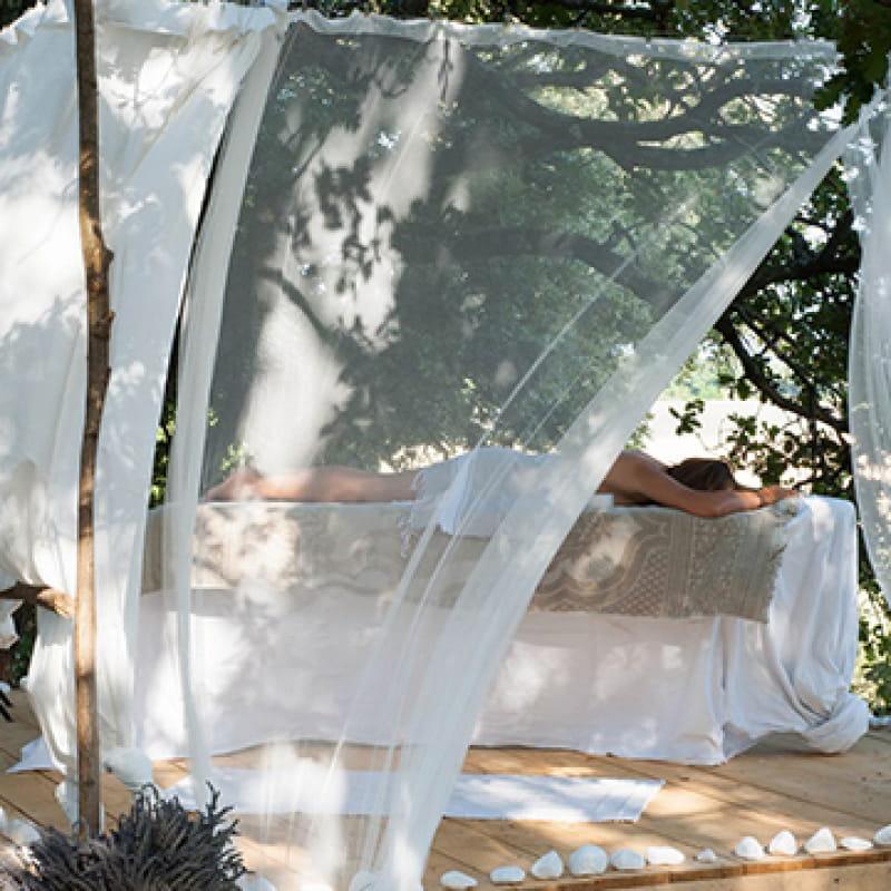 Massage au coeur des champs de lavande. L'essentiel de Lavande