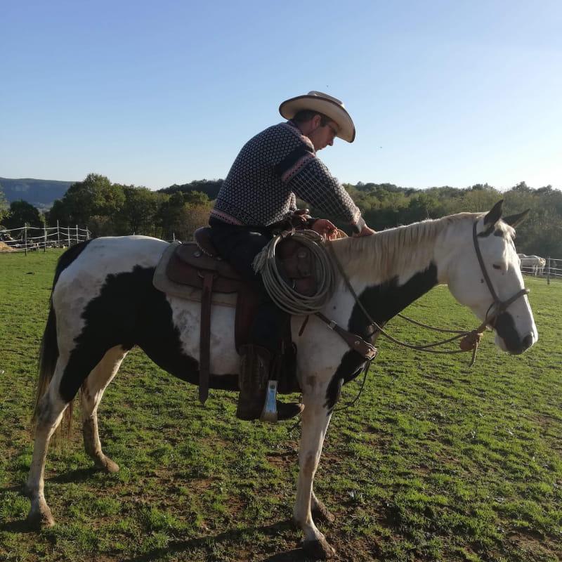 Balade équestre : cheval, poney, dos d'âne ou en carriole... chez Heartwood Familly Ranch