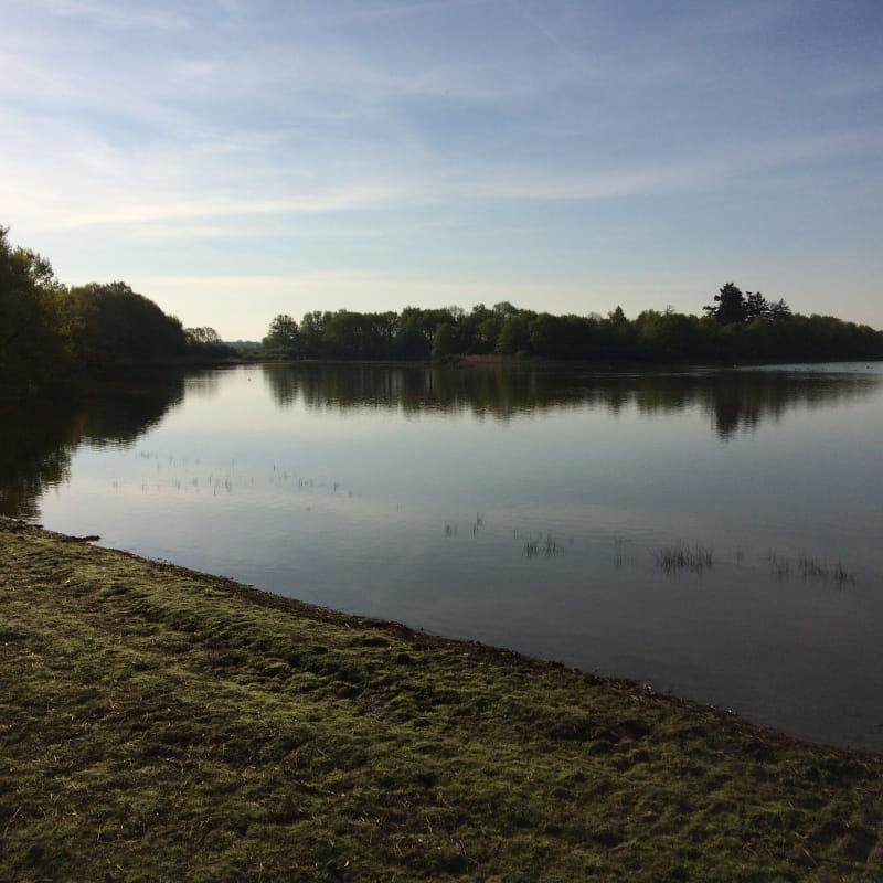 Observatoire de l'étang Turlet