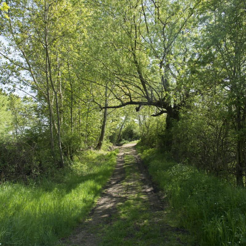 Randonnée : Le Bois de Bégut