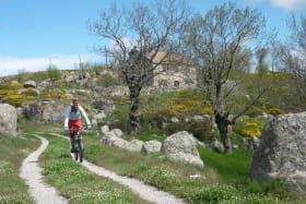 Randonnées à VTT et Vélo électrique