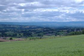 Gîte des Ormes à POMEYS (Rhône - Monts du Lyonnais): vue sur la plaine du Forez.