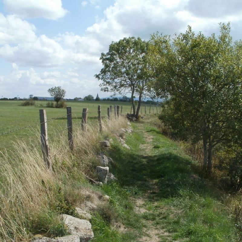 Chemin du Parcours de Santé