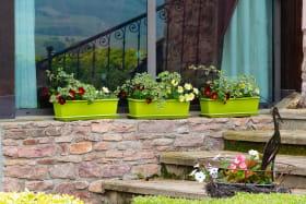 Gite 'L'Amandière' à Julienas (Rhône - Beaujolais vignobles) : jardinières fleuries
