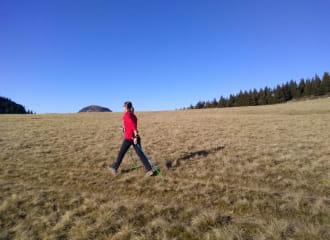 Nordic's walk