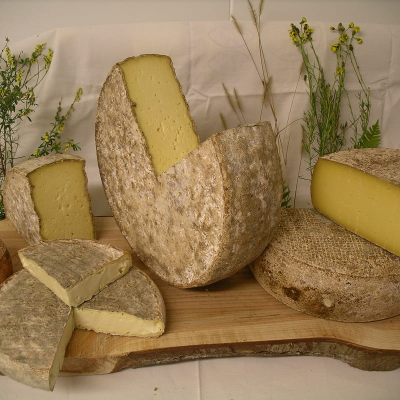Production de fromages