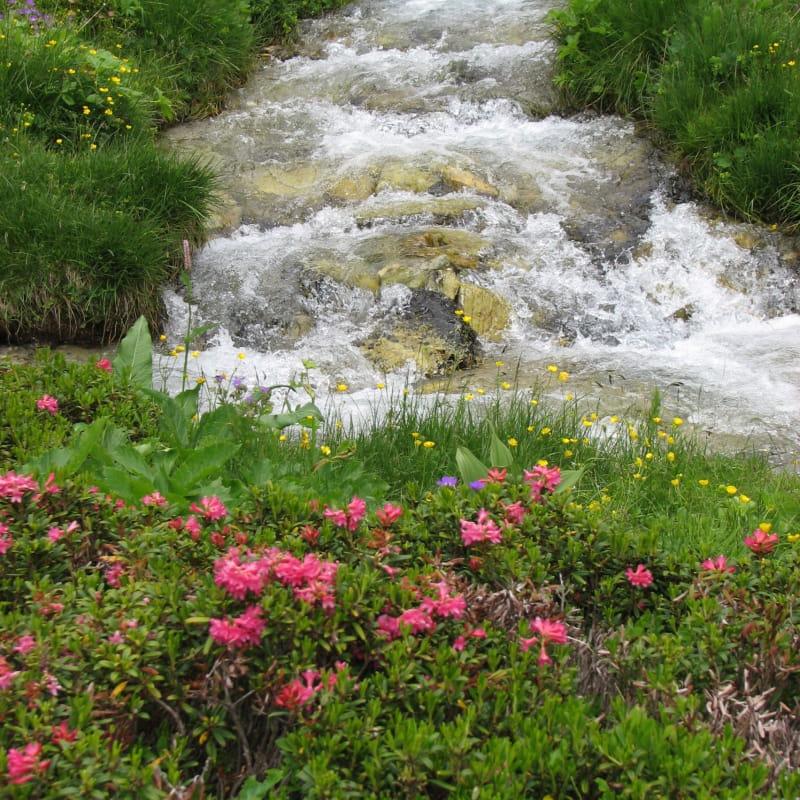 Le vallon de l'Orgère à Villarodin-Le Bourget