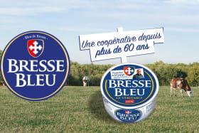 Bressor SA