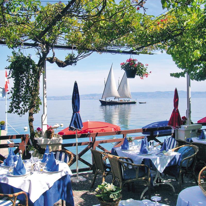 Restaurant Les Cygnes - la terrasse