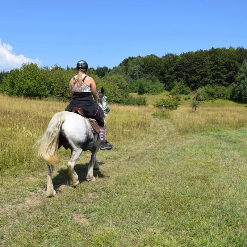 Equus Pleine Nature - Tourisme équestre