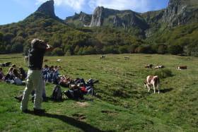 Activités du Bureau des Accompagnateurs en Montagne
